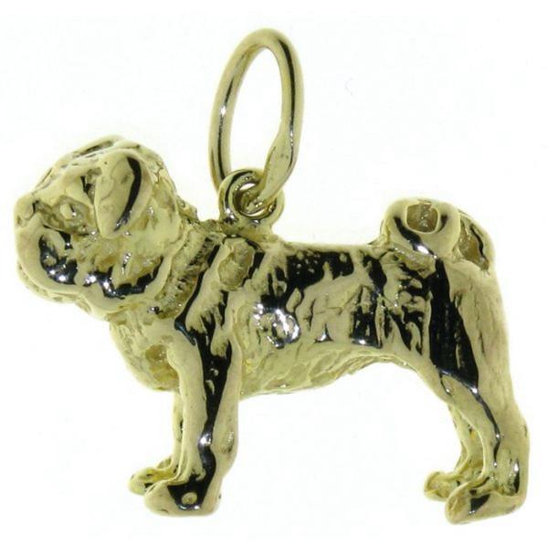 Anhänger Englische Bulldogge Hunderasse schwer massiv