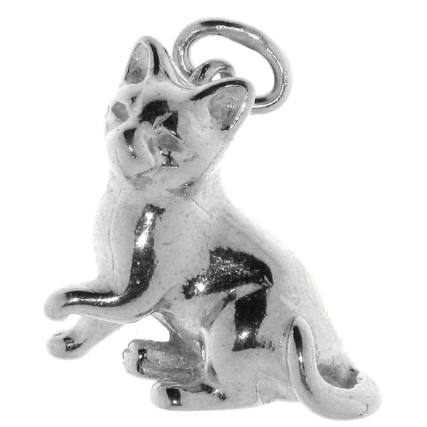 Anhänger Katze Kater Siamkatze Perserkatze massiv echt Silber