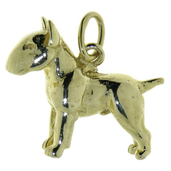 Anhänger Bullterrier Pit Bull Hunderasse schwer massiv echt Gold