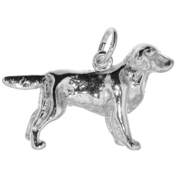 Anhänger Golden Retriever Hunderasse massiv echt Silber