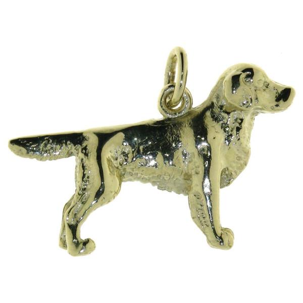 Anhänger Golden Retriever Hunderasse massiv echt Silber goldplattiert